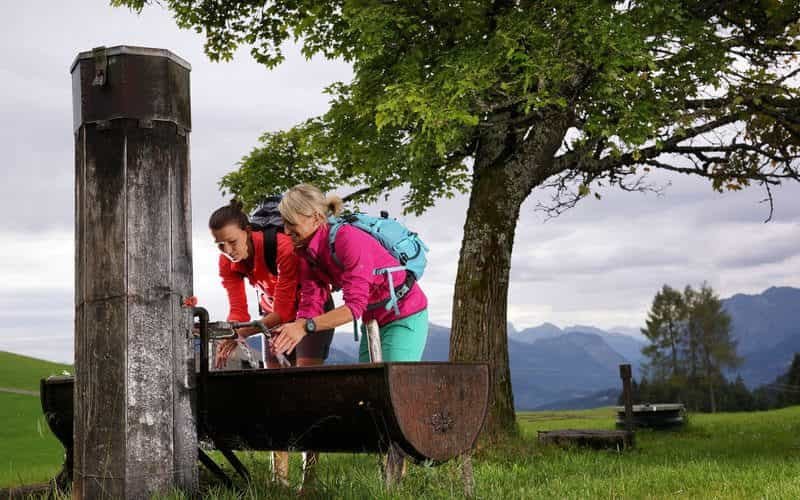 Kulinarisch Wandern in Schwarzenberg (c) Ludwig Berchtold - Bregenzerwald Tourismus