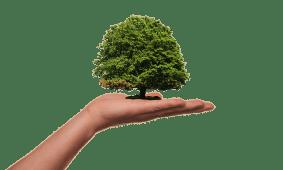 Tipps und Tricks um ökologischer leben